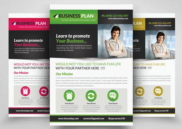 Business Solutions Consultant Flyer