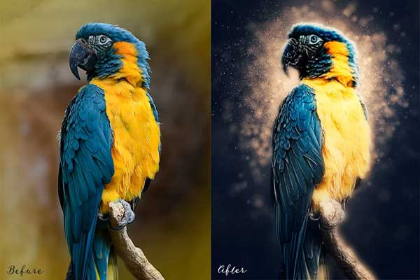 Editable Light Effect Photoshop Actions