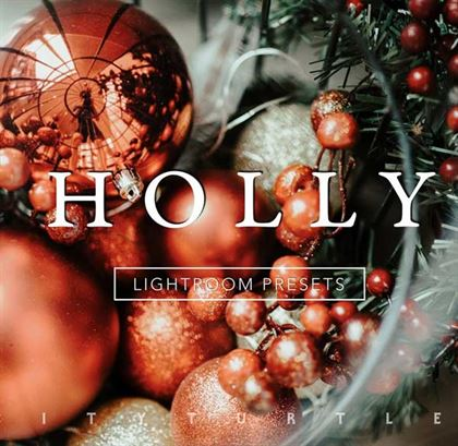 Holly Rich Vibrant Lightroom Presets Templates