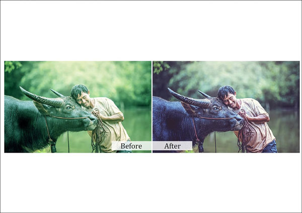 Simple Nature Photoshop Actions Template