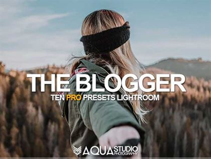 The Blogger Lightroom Presets Templates