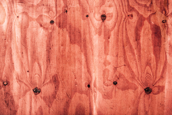 100 Wood Texture Collection