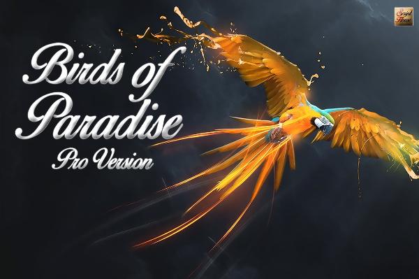 Birds Romantic Paradise Font