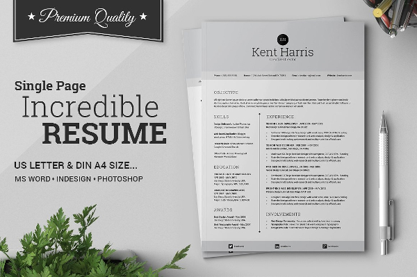 Incredible Single Page Resume Template
