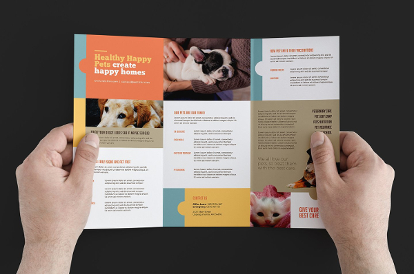 23 Clinic Brochure Templates Free Amp Premium Download