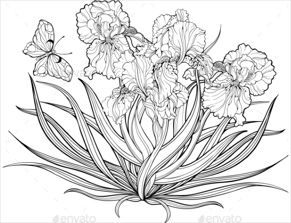 22 flower coloring pages free premium download iris flowers and a butterfly coloring page pronofoot35fo Choice Image