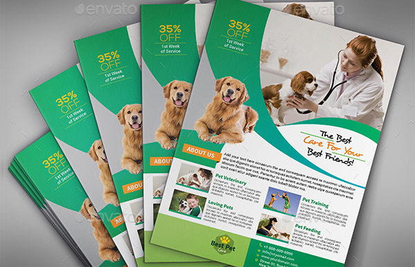 Abstrct Pets Care Flyer Template