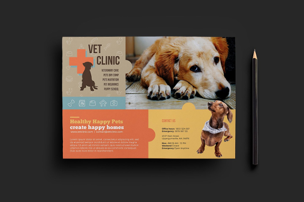 Clean Pet Clinic Flyer Template