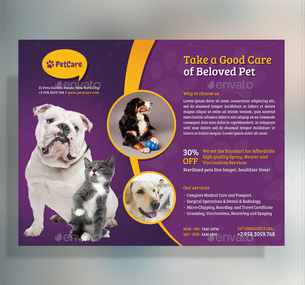 Pet Care Professional Flyer Template