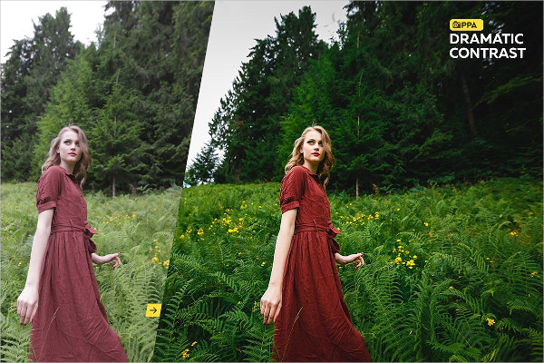 Awesome Summer Professional Photoshop Action