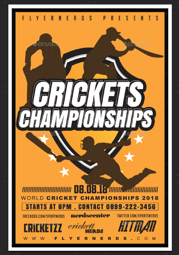 Beautiful Cricket Flyer Template