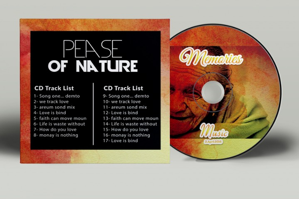 Unique CD Cover Bundles Template