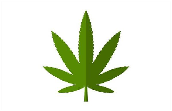 Cannabis Leaf Design Icon