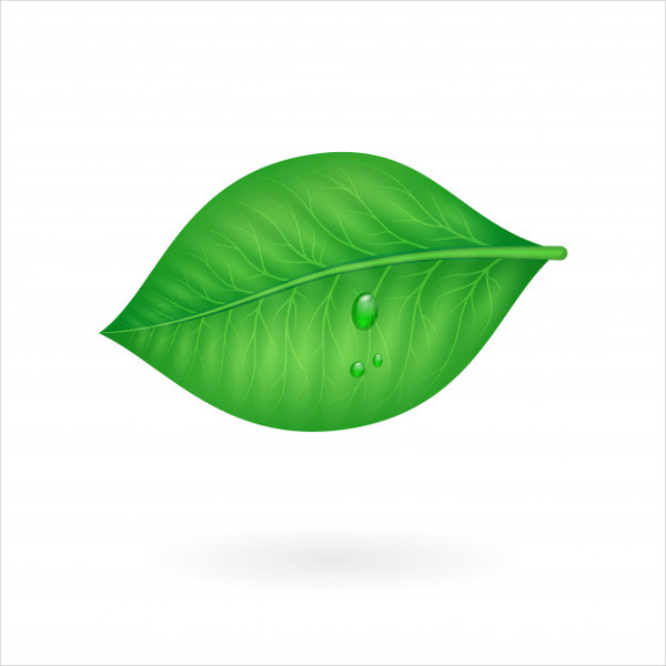 Free Download Summer Leaf Text Icon