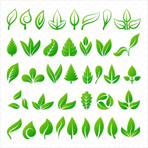 Leaf Icons Vector Illustration