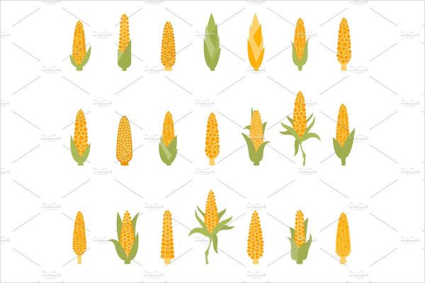 Set Of Corn With Green Leaves