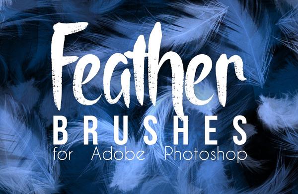 Feather Photoshop Brushes