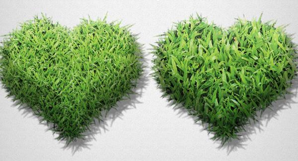 Grass Generator Pattern