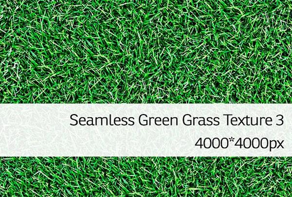 Seamless Grass Texture Pattern