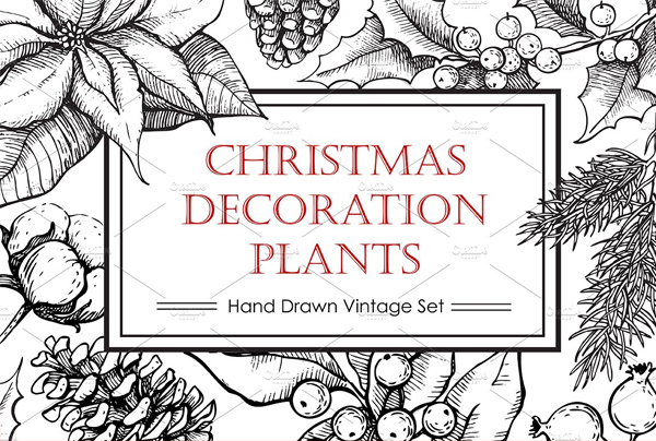 Hand Drawn Christmas Plants