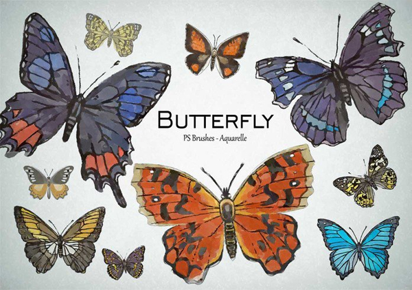 Watercolor Free Download Butterfly PSD Brushes