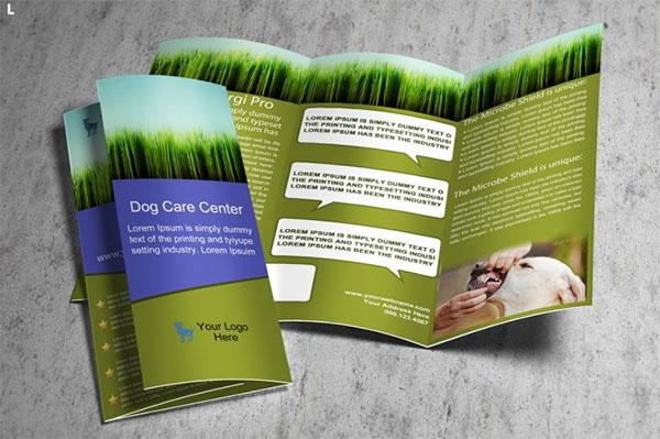 Ediatable Home Pet Care Trifold Brochure