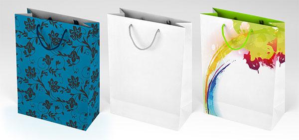 Free Paper Bag Mockup Design