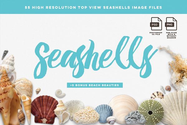 Beach Seashells Mockup Pack