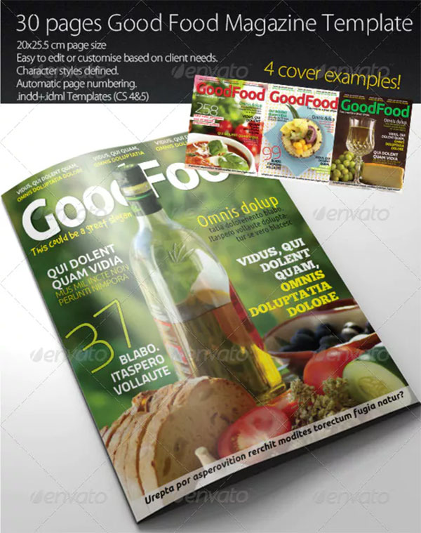 Food Magazine Template Designs