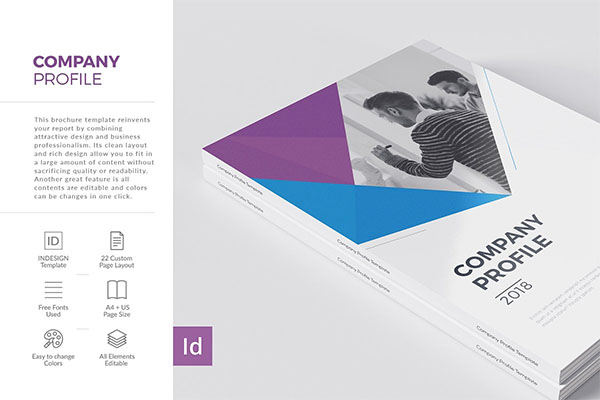 Company Profile 22 Pages