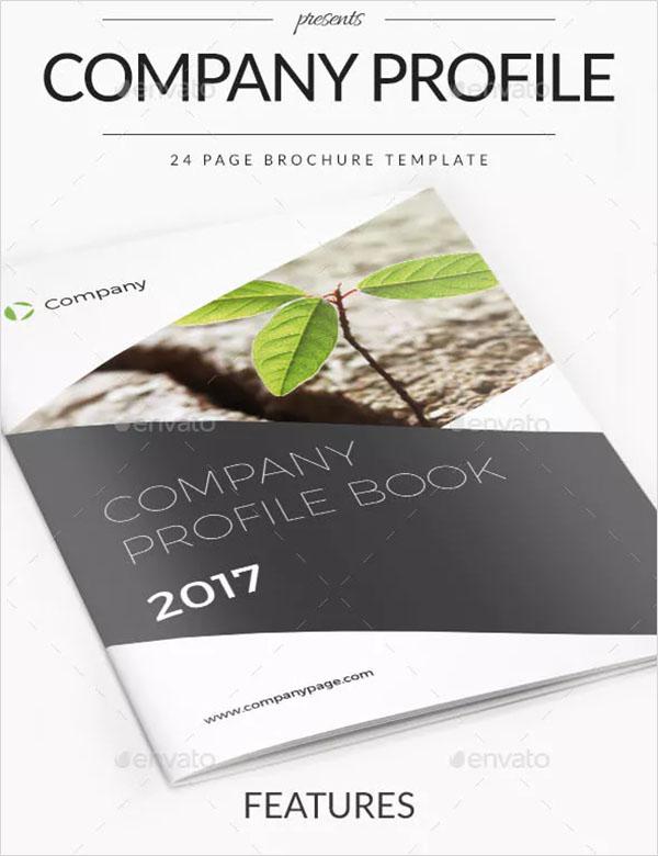 Company Profile PSD Design Brochure