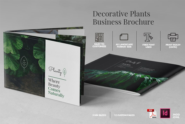 Decorative Plants Magazine and Brochure