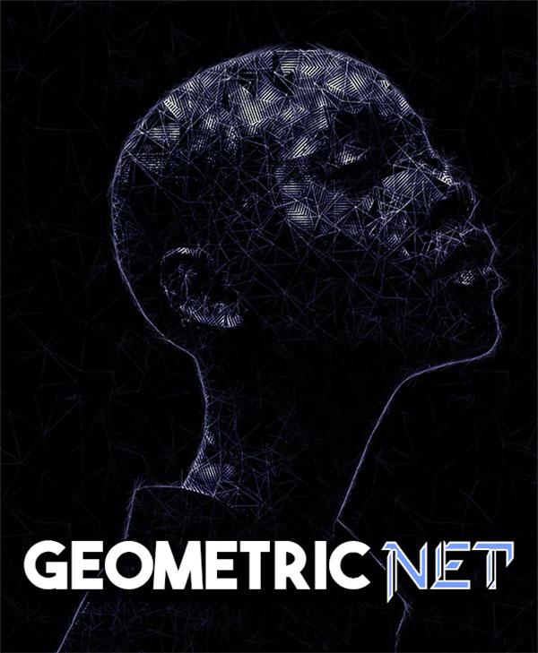 Geometric Net Photoshop Action