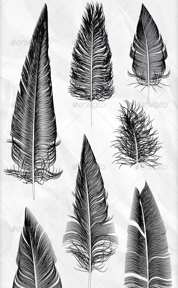 Various Hand Drawn Style Vector