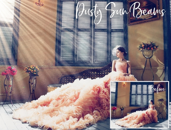 Dust and Bokeh Overlays