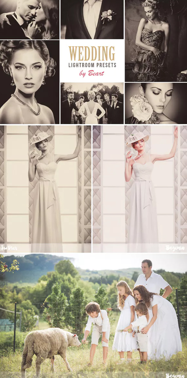 Premium Wedding Lightroom Preset