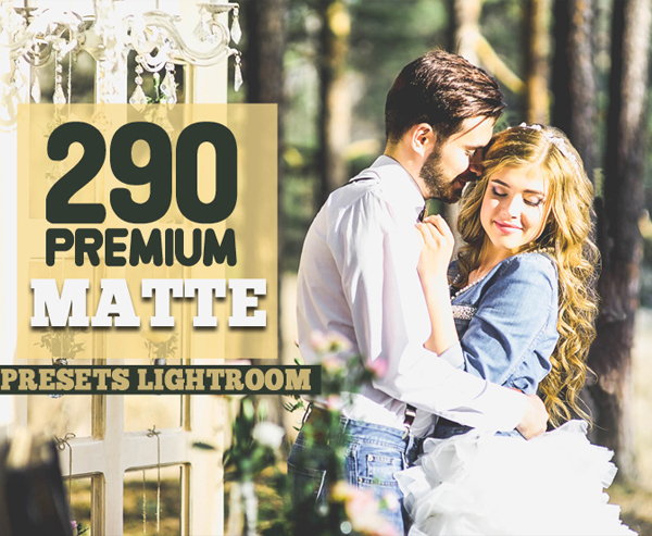 290 Premium Matte Preset Lightroom Bundle