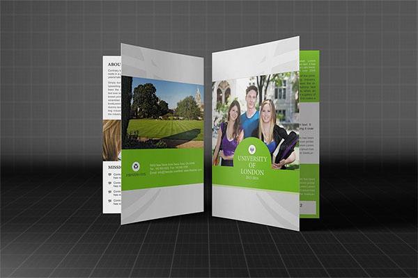 College or University Bifold Brochure