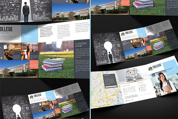 College and School Trifold Brochure