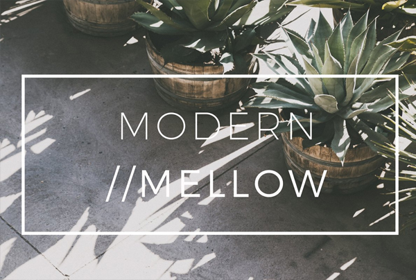 Modern Mellow Matte Lightroom Preset