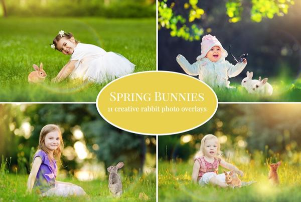 Spring Bunnies Photo Overlays