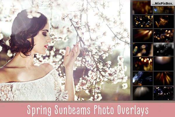 Spring Sunbeams Photo Overlays & Actions