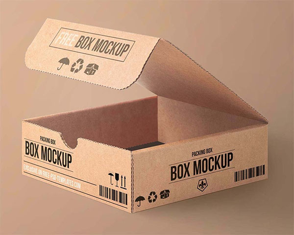 Free Carton Packaging Box Mockup
