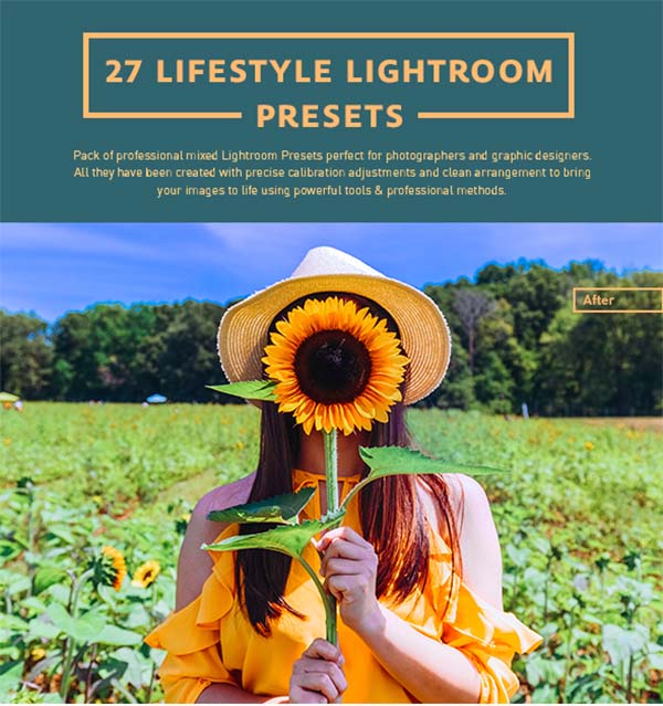 Modern Lifestyle Lightroom Presets