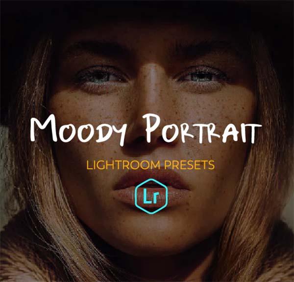 Portrait Moody Lightroom Presets