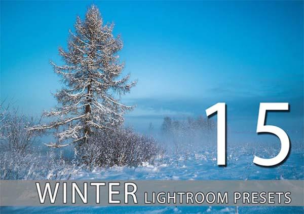 Winter Lightroom Premium Presets