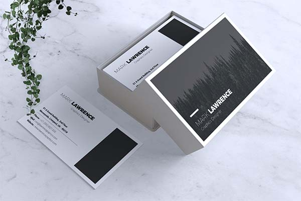 Minimalist Business PSD Card Template